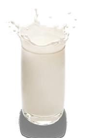 Jersey fibra di latte